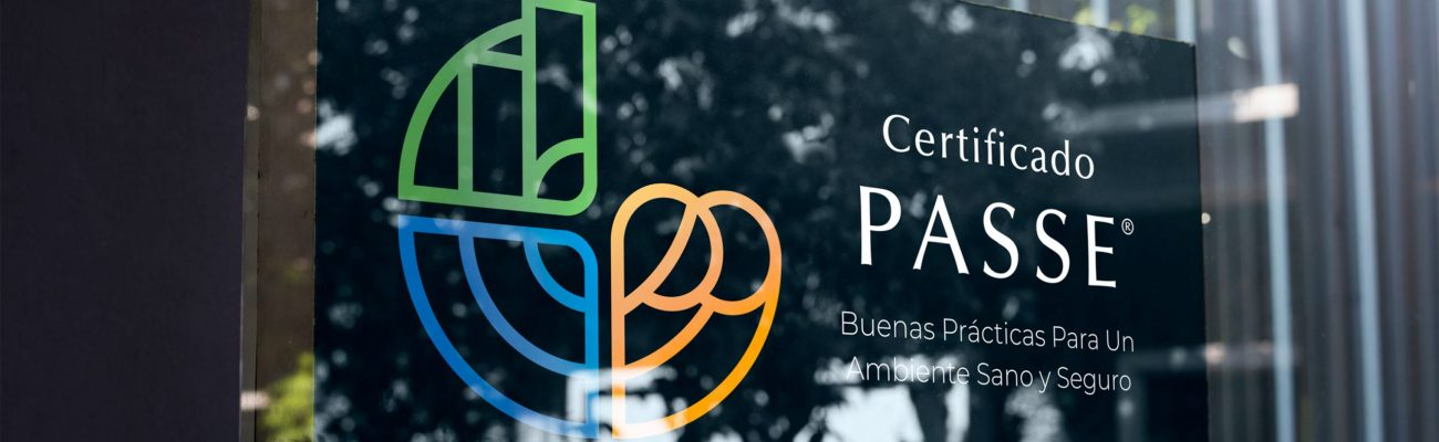 PASSE, Manual de Identidad SOLO LECTURA